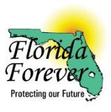 F_L_Forever_logo
