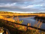 Scarborough Marsh - Golden Sunrise