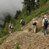 Hikers on a trail in Mt. Rainier