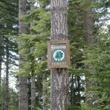 Washington Stewardship Forest sign
