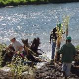 Tree planting along a river