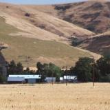 Farm in eastern Washington
